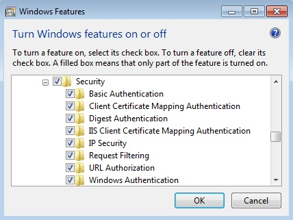 IIS Security Settings