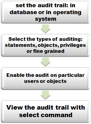 oracle audit settings process